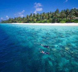 菲利兹尤岛