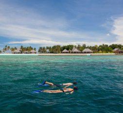 维利甘度岛