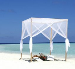 尼卡岛婚礼服务